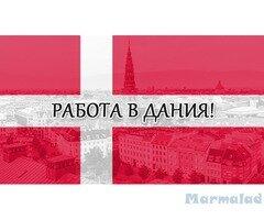 Разнасяне на вестници в Дания (Договор + Квартира)!