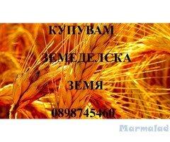 В Ямбол купувам земеделски земи и ниви